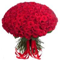 Букет из 201 красной розы