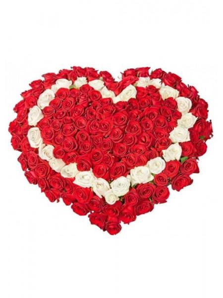 Сердце  из 251 розы